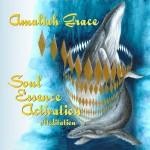 Soul Essence Activation CD new